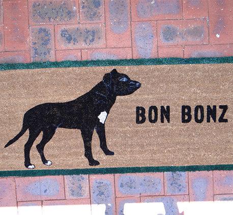 Bon Bonz