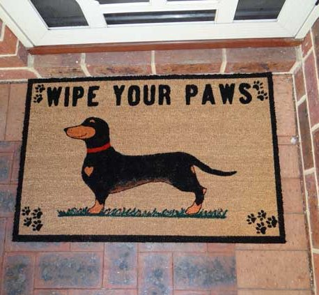 Wipe Your Paws Red Collar